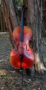 ATX 350 Cello