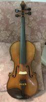 Maggini Violin