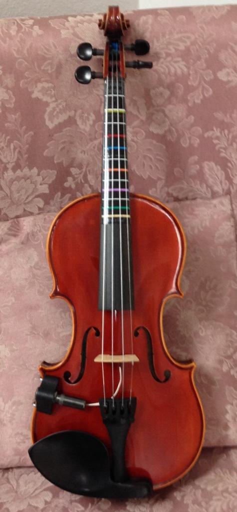 A-100 Electric Violin