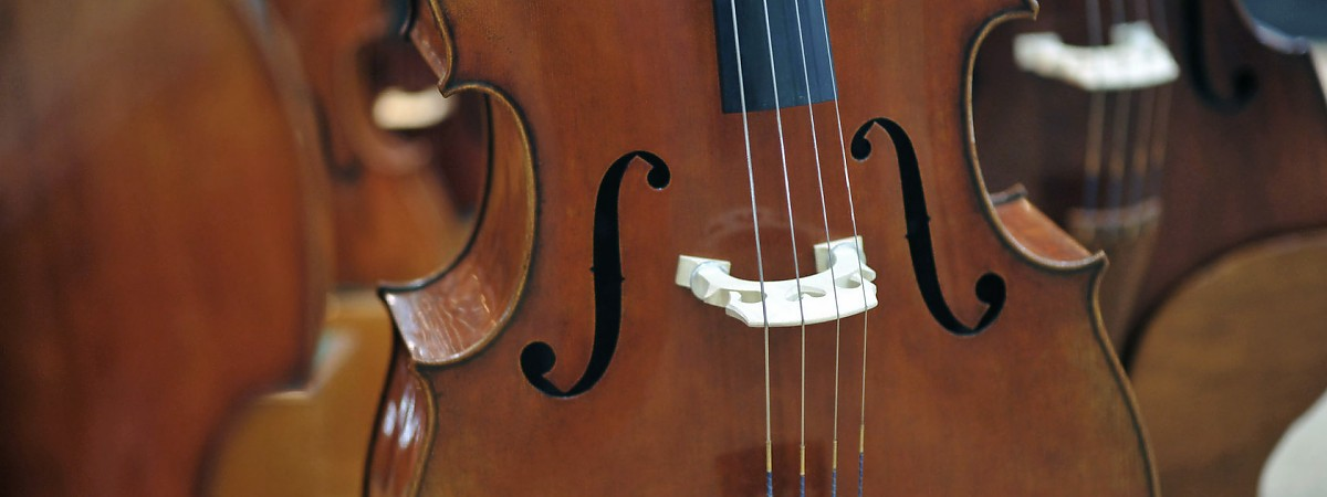 violins-for-sale